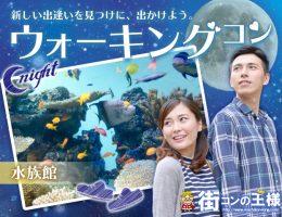 アクアパーク品川 Nightウォーキングコン【歳の差】夜の水族館デートで出会える♪